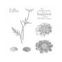 Field Flowers - Kopie